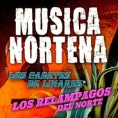 Play & Download Musica Nortena by Various Artists | Napster