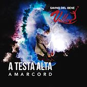 A testa alta by Amarcord