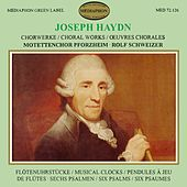 Play & Download Joseph Haydn: Choral Works by Various Artists   Napster