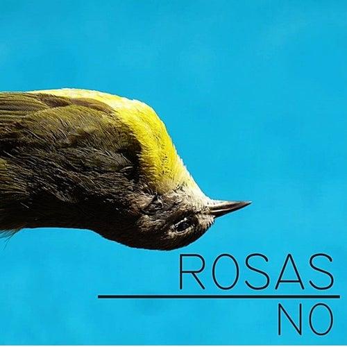 No de Rosas