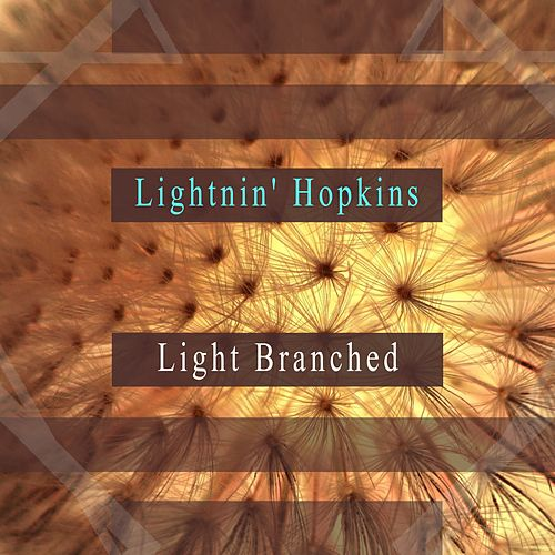 Light Branched by Lightnin' Hopkins