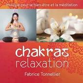 Play & Download Chakras relaxation : musique pour le bien-être et la méditation by Fabrice Tonnellier | Napster