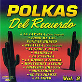 Polkas del Recuerdo, Vol. 2 by Various Artists