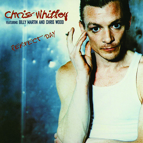 Perfect Day by Chris Whitley