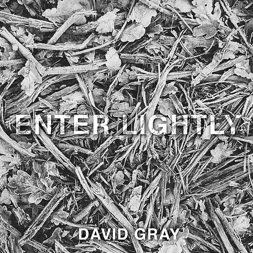 Play & Download Enter Lightly by David Gray | Napster