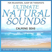 Play & Download Calming Seas by Niall | Napster
