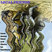 How Many Bees in Banbury - Single by Local Friends