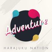 Adventure by Harajuku Nation