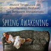 Play & Download Spring Awakening - Musica Terapeutica per Rilassamento Profondo Spa Benessere Massoterapia con Suoni della Natura Strumentali New Age by Yoga Music for Kids Masters | Napster