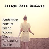 Play & Download Escape From Reality - Ambience Nature Silent Room Deep Relaxation Music with Mindfulness Spa Inner Peace Sounds by Radio Meditation Music | Napster