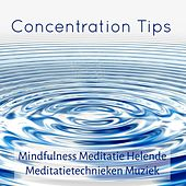 Play & Download Concentration Tips - Mindfulness Meditatie Helende Meditatietechnieken Muziek met New Age Instrumentale Zachte Geluiden by Concentration Music Ensemble | Napster