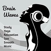 Brain Waves - Study Yoga Relaxation Deep Concentration Spa Smooth Music with Mind Training Exam Meditative Instrumental Sounds by Concentration Music Ensemble