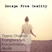 Play & Download Escape From Reality - Öppna Chakran Energicentrum Koncentration Musik för Spabehandlingar Djup Avslappning by Radio Meditation Music | Napster