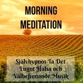 Play & Download Morning Meditation - Självhypnos Ta Det Lugnt Hälsa och Välbefinnande Musik för Positivt Tänkande Mindfulnessträning Helande Daglig Yoga by Various Artists | Napster