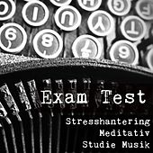 Play & Download Exam Test - Stresshantering Meditativ Studie Musik för Förbättra Koncentration med Naturens Andlig Healing Instrumental Ljud by Exam Study New Age Piano Music Academy | Napster