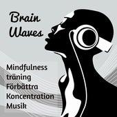 Brain Waves - Mindfulnessträning Förbättra Koncentration Musik med Instrumental New Age Ljud by Concentration Music Ensemble