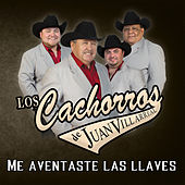 Play & Download Me Aventaste las Llaves by Los Cachorros de Juan Villarreal | Napster