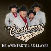 Me Aventaste las Llaves by Los Cachorros de Juan Villarreal
