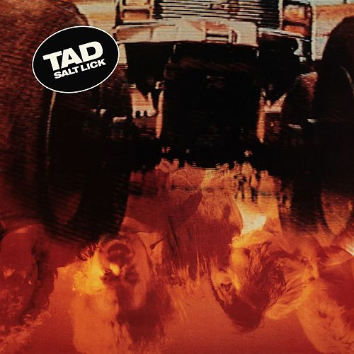 Play & Download Salt Lick (Deluxe Edition) (Remastered) by Tad | Napster