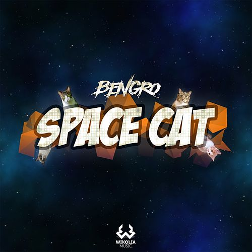 Space Cat by Bengro