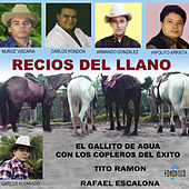 Recios del Llano by Various Artists