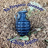 An Organic Grenade by I Ching Gatos