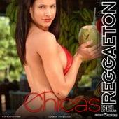 Chicas de Reggaeton by Various Artists