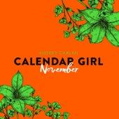 November - Calendar Girl 11 (Ungekürzt) von Audrey Carlan