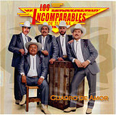 Play & Download Cuadro de Amor by Los Incomparables De Tijuana | Napster