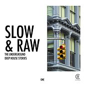 Play & Download Slow & Raw, Vol. 1 by Various Artists | Napster