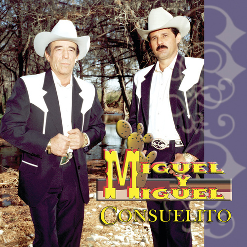 Play & Download Consuelito by Miguel Y Miguel | Napster