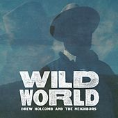 Play & Download Wild World by Drew Holcomb | Napster