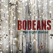 Play & Download The Night Divine by BoDeans | Napster