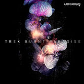 Burnt Paradise by Trex