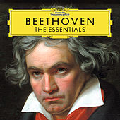 Play & Download Beethoven: The Essentials by Various Artists | Napster