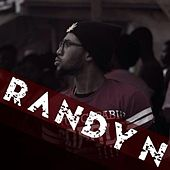 Success Story (feat. Level) by Randy N