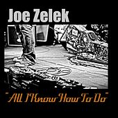 All I Know How to Do by Joe Zelek