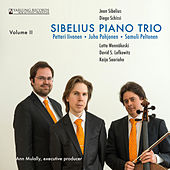 Sibelius Piano Trio, Vol. 2 by Sibelius Piano Trio