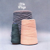 Play & Download The Wonder City by Little Wings | Napster