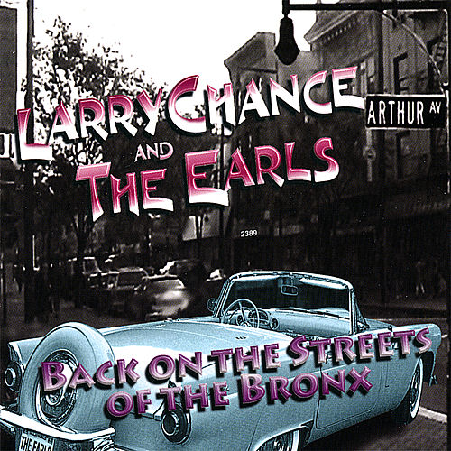 Back On the Streets of the Bronx by Larry Chance