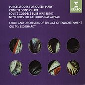 Purcell - Odes for Queen Mary von Various Artists