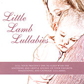 Play & Download Little Lamb Lullabies by Little Lamb Music | Napster