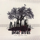 Dear Birds by Low In The Sky