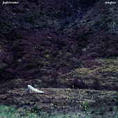 Synapses by Papercranes