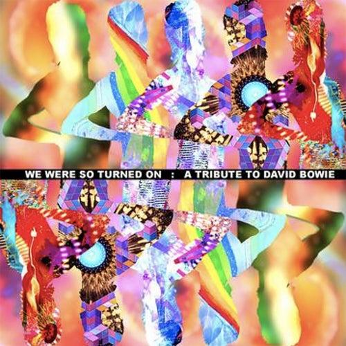 Absolute Beginners by Carla Bruni