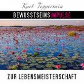 Bewusstseinsimpulse zur Lebensmeisterschaft by Kurt Tepperwein