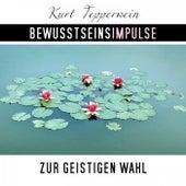 Bewusstseinsimpulse zur geistigen Wahl by Kurt Tepperwein