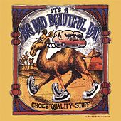 Play & Download Choice Quality Stuff (Remastered) by It's A Beautiful Day | Napster