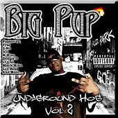 Undaground Hog, Vol. 2 by Big Pup