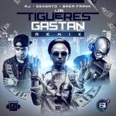 Los Tigueres Que Gastan (Remix) by Sensato
